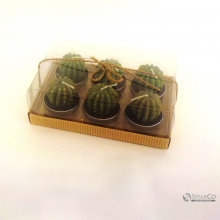 WHOLESALE CACTUS PARAFFIN WAX CC GREEN 10006905 2025010010044 8992017309653